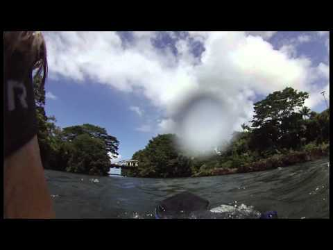 Kayaking Adventures in Hilo, Hawaii – Episode 164