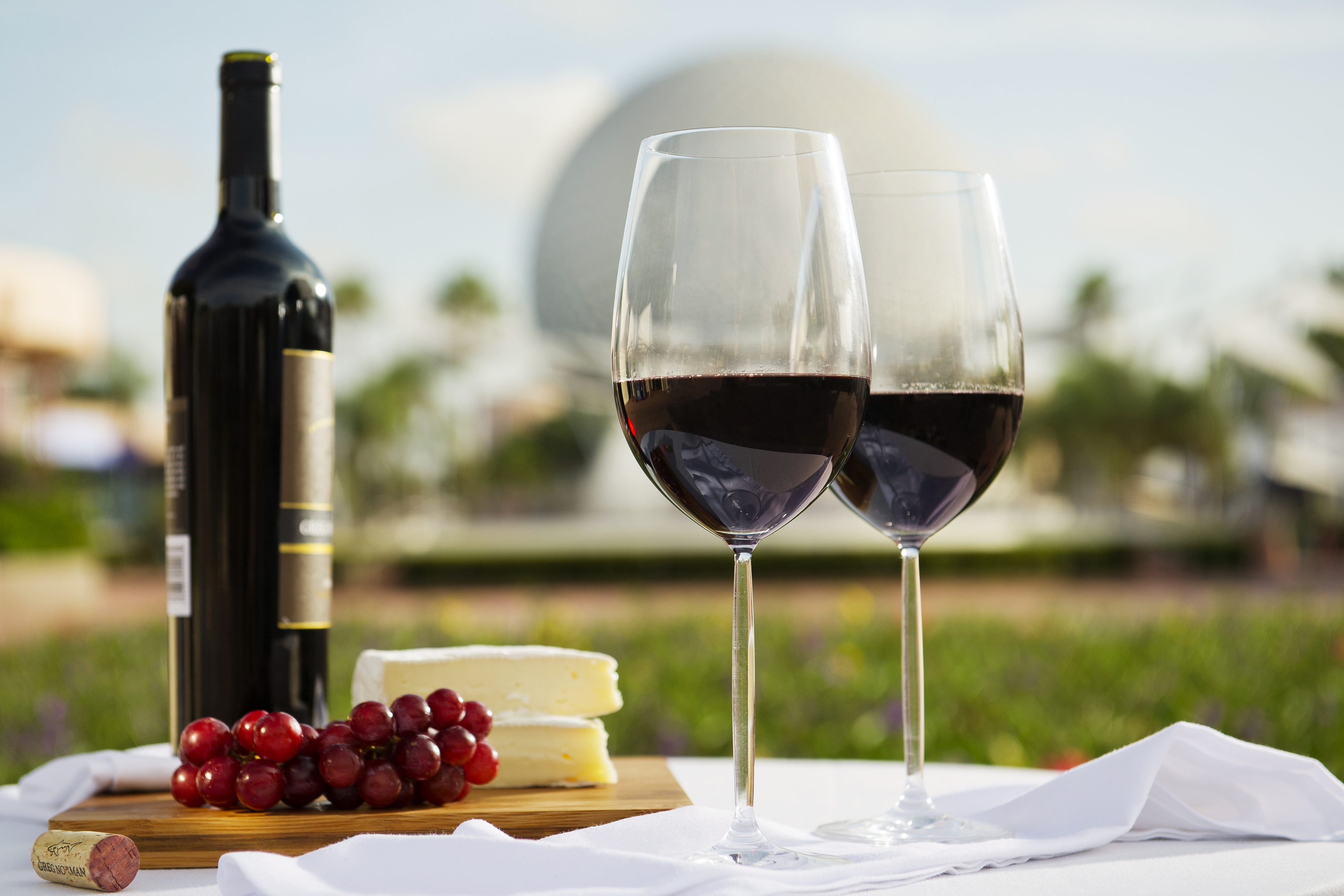 Guests can sample wine, cheese and ethnic tastes from regions around the world Sept. 27 - Nov. 11, 2013 during the 18th annual Epcot International Food & Wine Festival at Walt Disney World Resort in Lake Buena Vista, Fla. (Matt Stroshane, photographer)